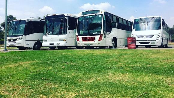 Transporte Escolar, Transporte de Personal, Transporte de Turismo