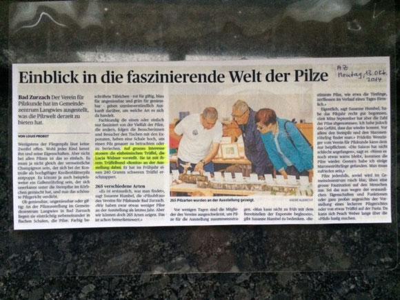 Zeitungsausschnitt zum Bild oben