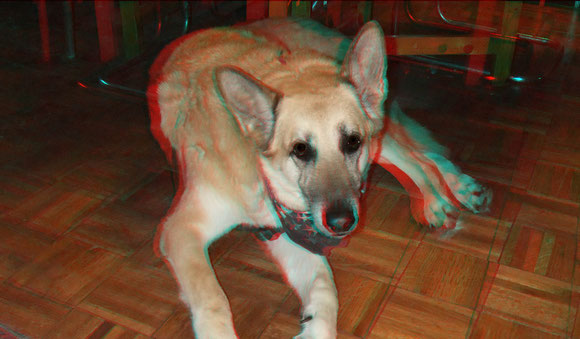 Another anaglyph of Noah