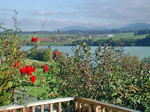 Terrassenidyll am Lechsee