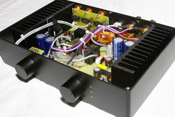 Усилитель выполнен по схеме двойного моно, с двумя независимыми каналами.