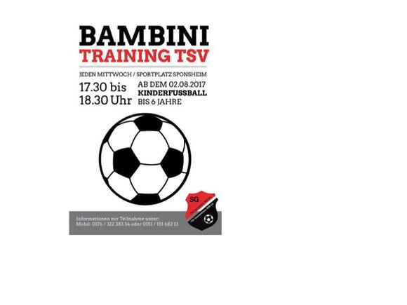 Seit 2017 verfügen der TSV Sponsheim und der TSV Dromersheim über eine Bambinimannschaft