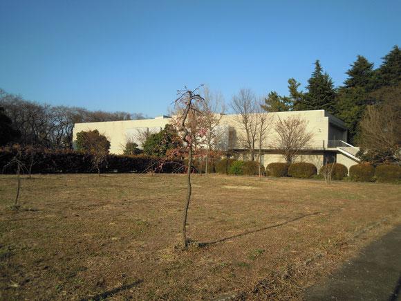 新しい植樹と国立ハンセン病資料館の建物