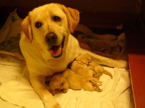 産まれた翌日