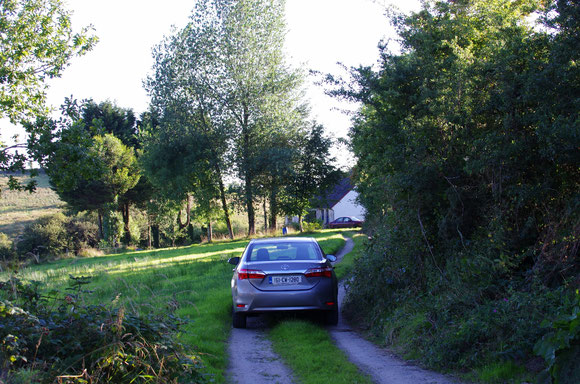 アイルランド 田舎