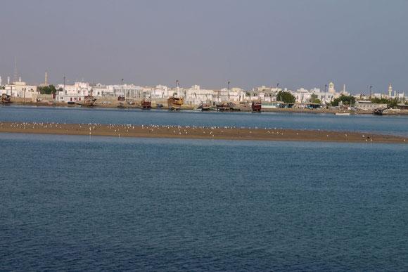 Blick über die Laguna auf die Dhau-Werften, wo ohne Pläne nur nach Überlieferung gearbeitet wird