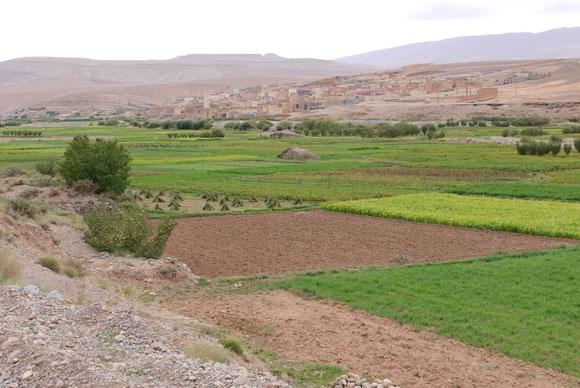 Auf der Südseite wird es langsam wieder zivilisierter. Siedlungen und Gärten wechseln sich ab.