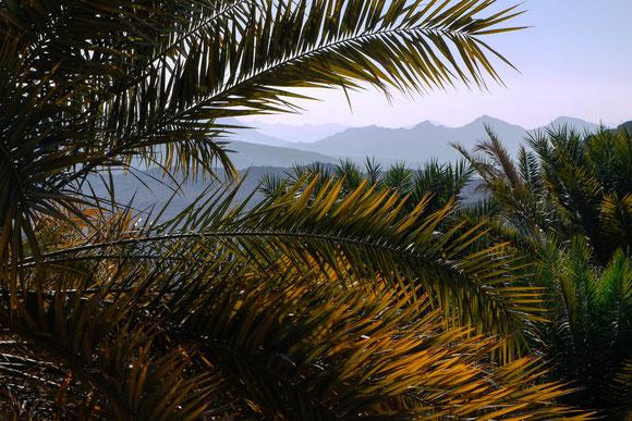 der Ausblick von meinem Sessel aus :-). Und der erste klare Tag im Oman, kein Dunst, evtl. aufgrund der Höhenlage.