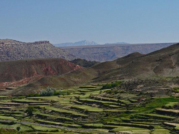 In den unteren Höhenlagen wird noch Landwirtschaft betrieben.