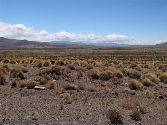 westlich von Las Lajas auf die Anden zu wird die Luft wieder klarer, und es kommen wieder Farben durch