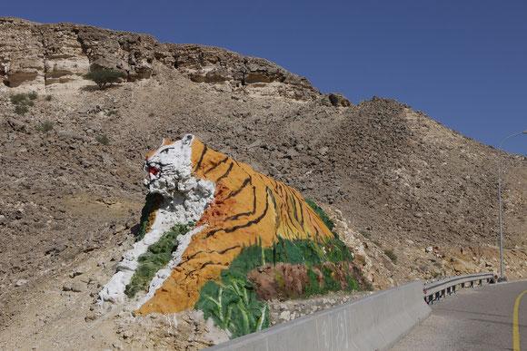 """was die """"mano del desierto"""" für Chile bedeutet, soll dieser Tiger für den Oman werden: passend auf das Gestein am Durchbruch einer Passhöhe gemalt."""