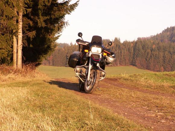 gerne auf den erlaubten Waldwegen im Schwarzwald unterwegs