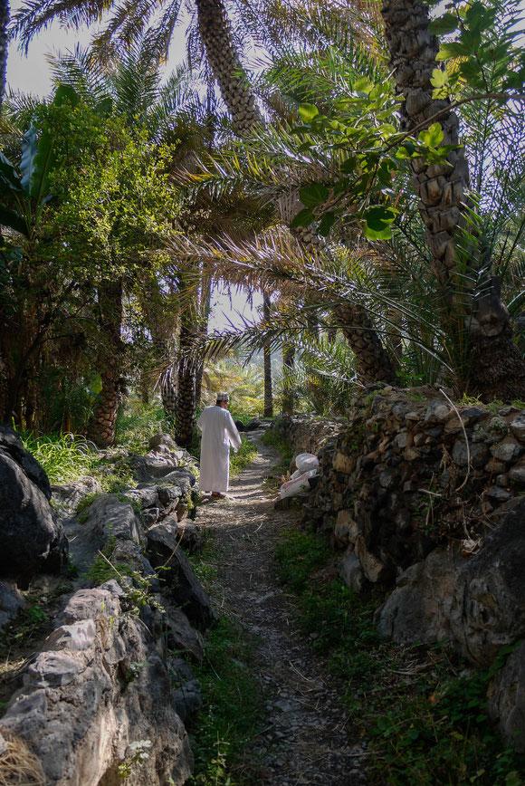 Anfang unseres Spazierganges. In den weißen Säcken an der Seite befindet sich der Dung der Tiere, um im Garten als Dünger verwendet zu werden.
