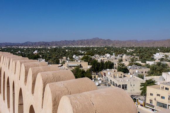 der grüne Reichtum Nizwas: anders als in Europa, wo Palmen als exotische Zierpflanzen erfreuen und Schatten spenden, gehört im Oman jede (Dattel- !)-Palme irgendjemandem, der sie und ihre Erzeugnisse hegt und schützt.