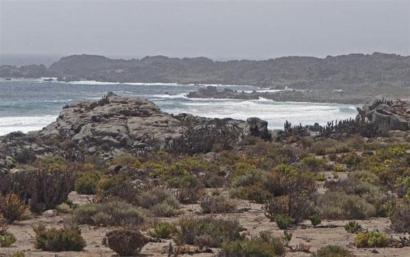 Sandstrand wechselt mit Lavafelsküste ab
