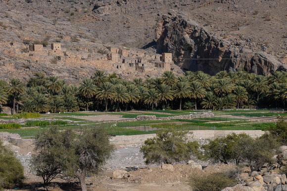 die alte Bauweise aus Lehm, die ständig erneuert werden muss, und fehlende Strom- und Wasserversorgung führen dazu, dass viele alte Dörfer aufgegeben werden, wenn jetzt die Omanis so leicht neue Häuser nach heutigem Standard bauen können.