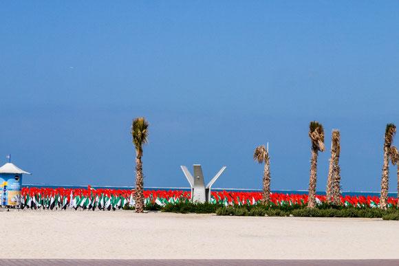 Beispiel für die Fahnenwut in den Emiraten: am Strand, wovon sie ja genug haben ;-)
