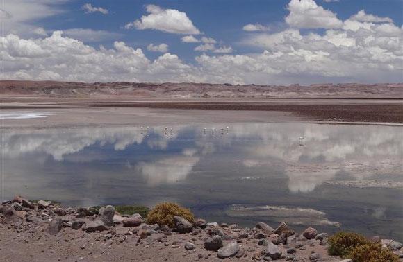 kurz vor der Grenze zu Argentinien öffnete sich die Landschaft ins scheinbar Unendliche