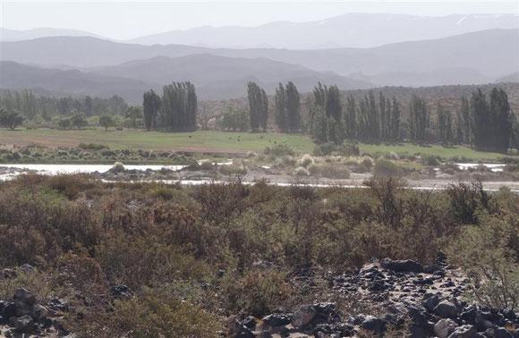 ...aufgewirbelter Staub und Sand: willkommen in Patagonien . Daher sind Pappeln immer ein Anzeichen von Häusern (hier eine einsam gelegene Farm)