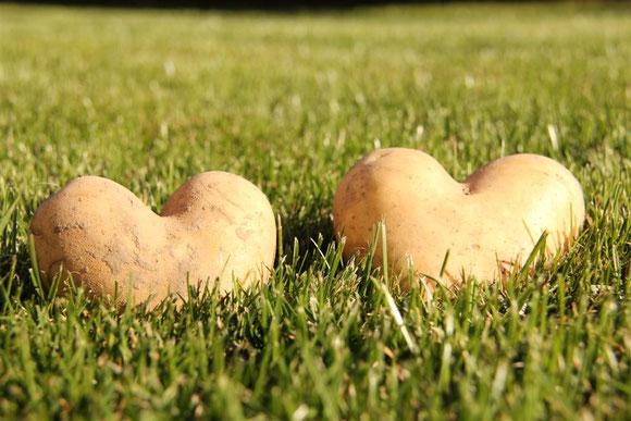 Herzkartoffeln...