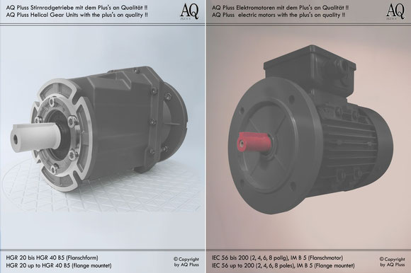 Stirnradgetriebe mit EW-Motor 230 V B5