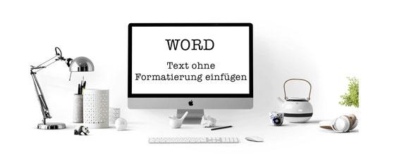 Text ohne Formatierung einfügen in Word