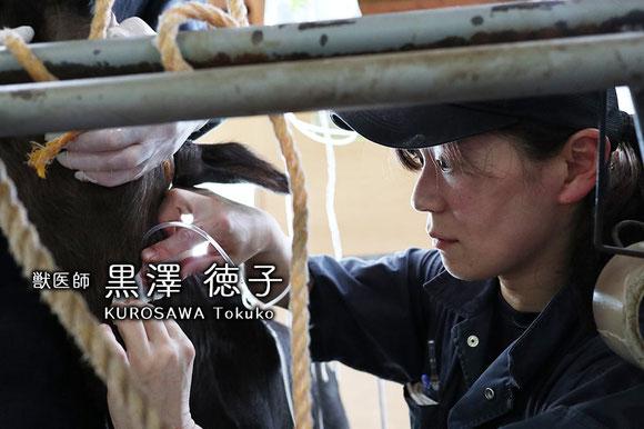 産業動物臨床獣医師04