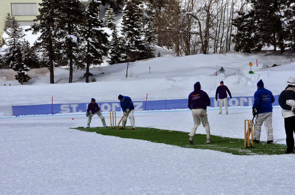 Cricket match in progress - Cricket on Ice 2014