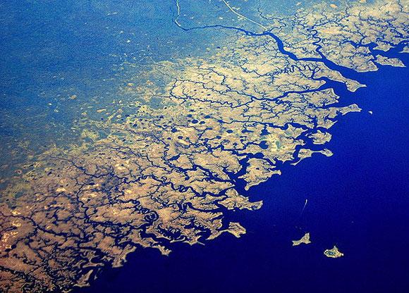 La côte des Everglades en Floride