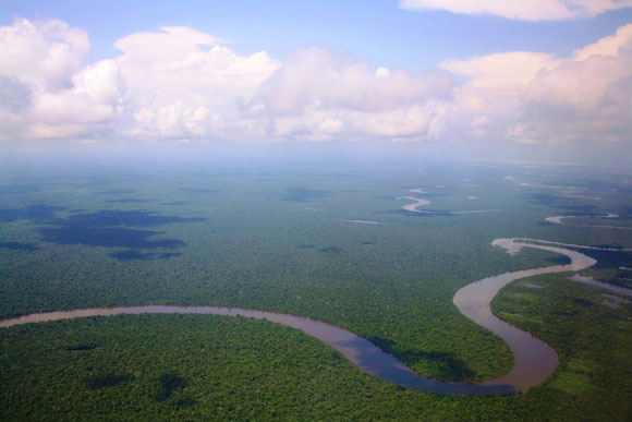 Rio Maranon from the air: Trip to Peru collecting data on knifefish breeding physiology & behavior
