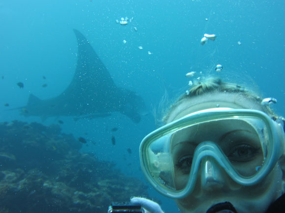 体験ダイビングでもマンタを見ることが可能ですよ。