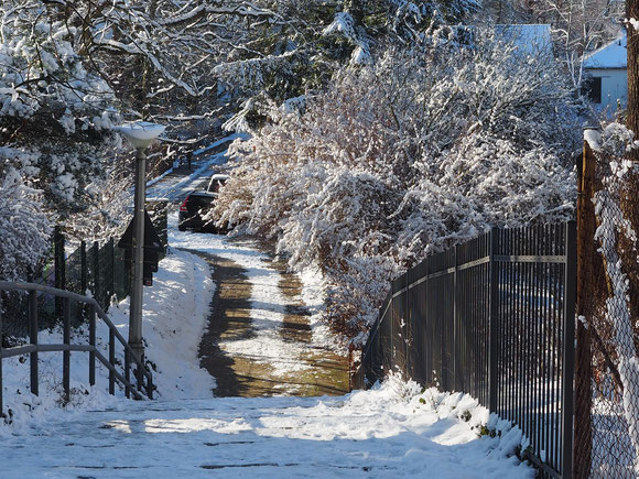 Potsdam, Winter 31.1.2021