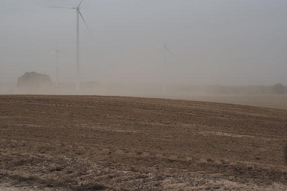 Sandsturm Oktober 2018 Seenplatte bei Röbel, Windstärke 10 und Trockenheit, Sichtweite teilweise unter 1 m