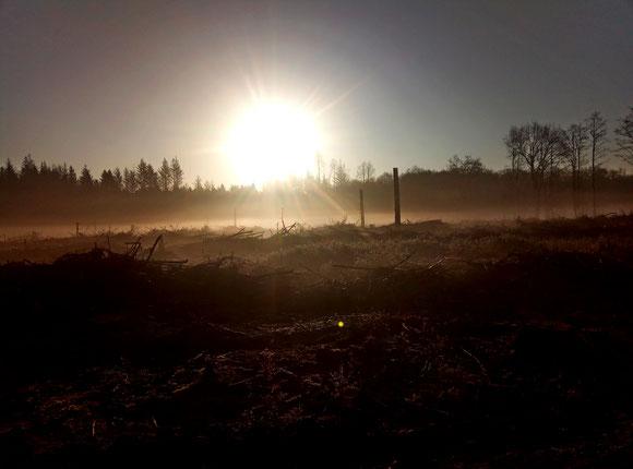kühle Sonne, eiskalter Wind und ab und an mal kalte Schauer so sehen die letzten Wochen aus