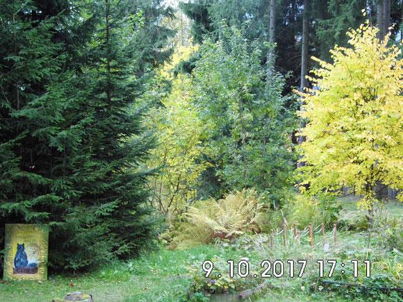 Schneller als man denkt ist der Herbst wieder da. Wie immer mit so vielen bunten Farben