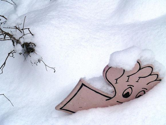 Endlich Schnee,eine Wohltat. Endlich können die Pflanzen etwas ausruhen