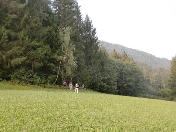 Ab in den Süden Kärntens,was wird uns da alles erwarten?.Hier kennen wir die Landschaft noch nicht
