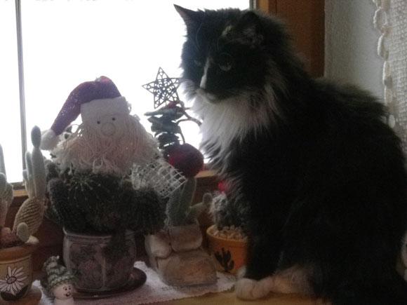 Pia ist mit dem Weihnachtsmann befreundet