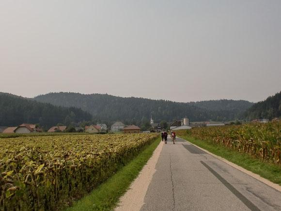 Der Weg nach Rinkenberg-lange und zäh und die Sonne sengt herab