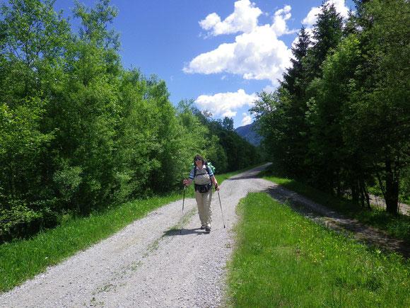 Kilometer um Kilometer geht es Flußaufwerts,immer den Bergen zu