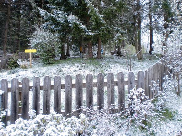 Doch Ende März kommt nochmals kurz der Winter zurück