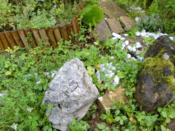 Ein Stein vom Hochschwab wurde mir zum Geburtstag vor meine Waldhaustür gepflanzt