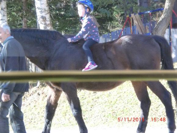 jetzt hat Merlin eine neue Reiterin auch bekommen