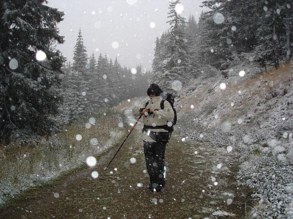Am Weg durchs Bärental gehts schon ganz schön feucht zu
