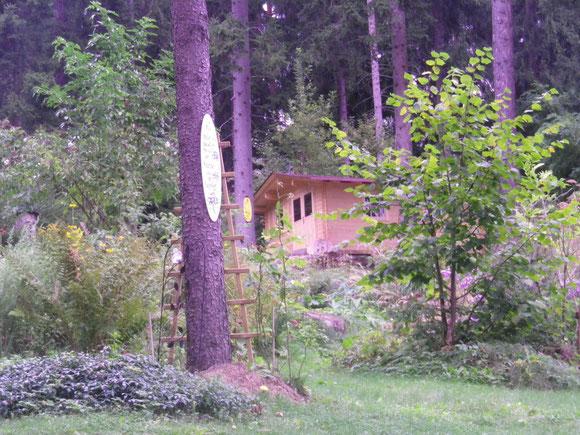 Mein neues Waldhaus
