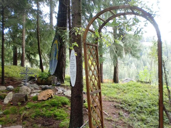 Und in meiner Waldkapelle sprisst jede Menge Moos