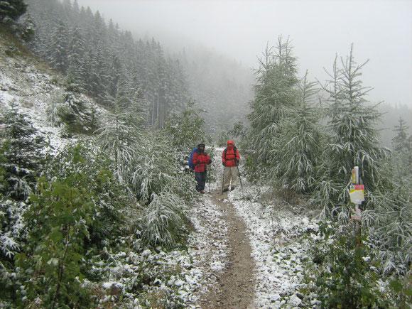 Im Bärental 2007