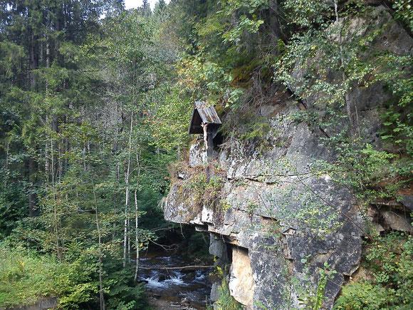 Unten im Wildbachtal
