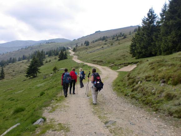 Der lange Weg zur Grillitschhütte