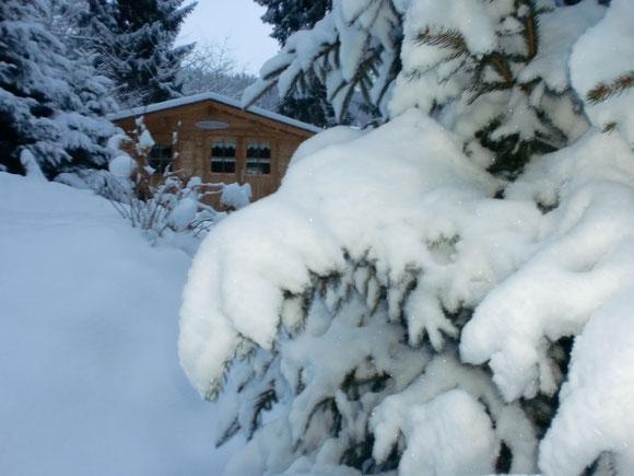 Erst einmal Winterruhe. Endlich Schnee in diesen milden Winter. Feb. 2015